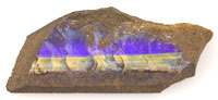 1 rough boulder opal #RB486