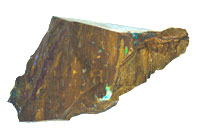 Rough opalised fossil wood specimen