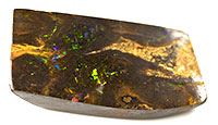 1 Polished opalised fossil wood specimen